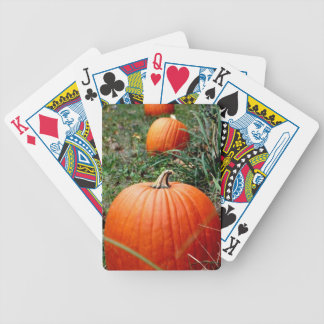 Nature lovers beautiful playing cards! bicycle playing cards