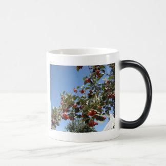 Nature Magic Mug