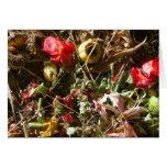 Nature Morte 4 Greeting Cards
