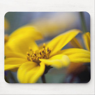 Nature Mouse Pad Featuring Flower photography