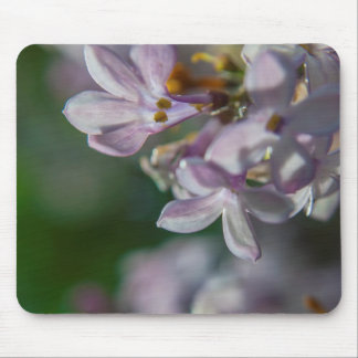 Nature Mouse Pad featuring Lilac Flower Photo