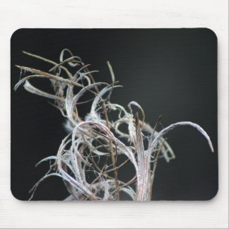 Nature Mousepad, Dried leaf Mouse Pad