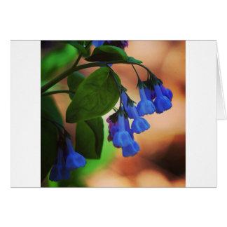 Nature nurtures card