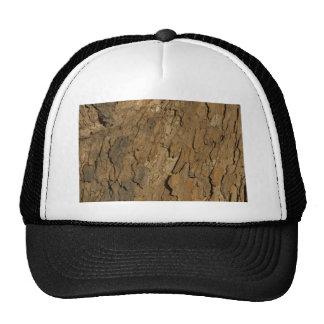Nature Patterns II Hats