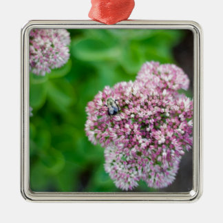Nature photo bee on pink flower square metal christmas ornament