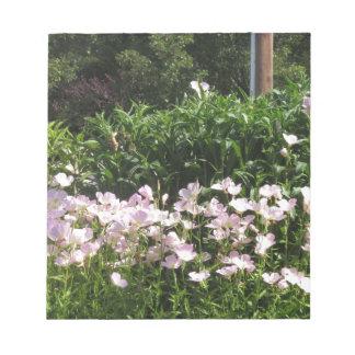 Nature Photo CherryHILL New Jersey America NVN663 Memo Pads