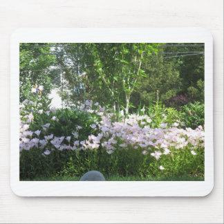 Nature Photo Flowers NewJersey  America NVN665 FUN Mousepad