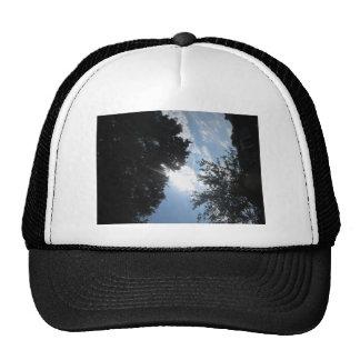 Nature Photo NJ CherryHill America NVN667 GIFTS FU Mesh Hat