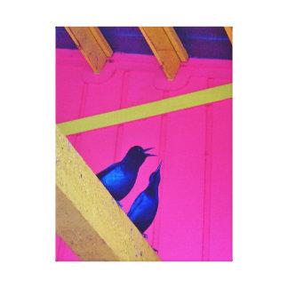 Nature Photo Print / Blackbirds At Food Court