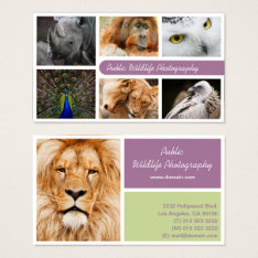 Nature Photographer Outdoors Wildlife Photography Business Card at Zazzle