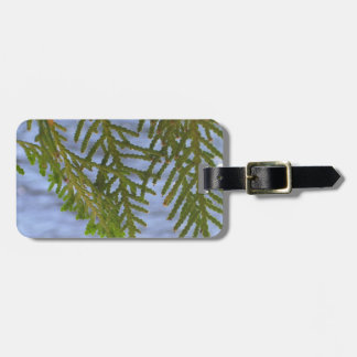 Nature photography bag tag