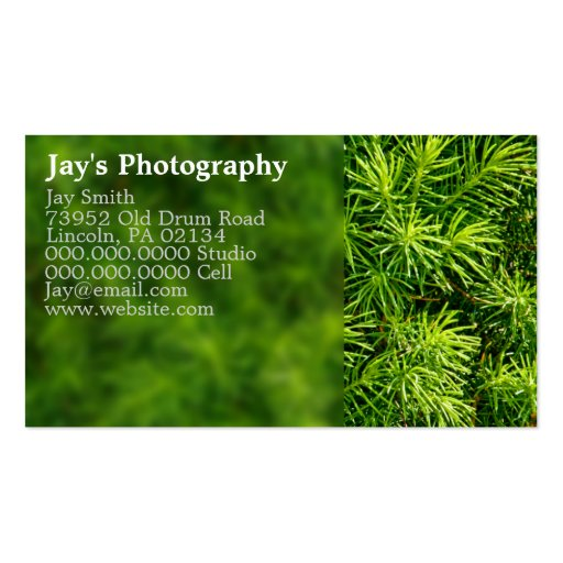 Nature Photography Business Cards