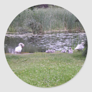 Nature Photography Classic Round Sticker