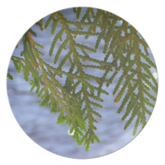 Nature photography dinner plate