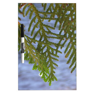 Nature photography Dry-Erase board