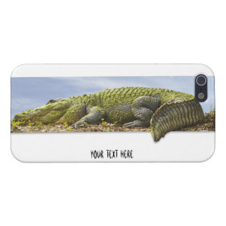 Nature Photography Huge Gator Panoromic Cut Out iPhone SE/5/5s Case