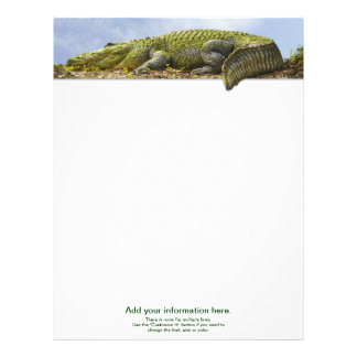 Nature Photography Huge Gator Panoromic Cut Out Letterhead