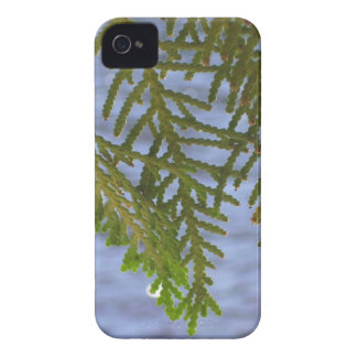 Nature photography iPhone 4 covers