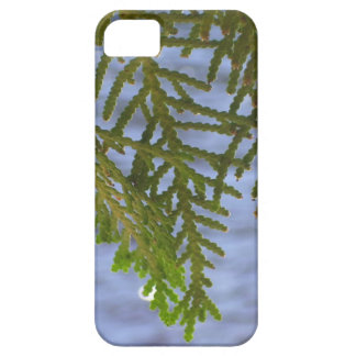 Nature photography iPhone SE/5/5s case