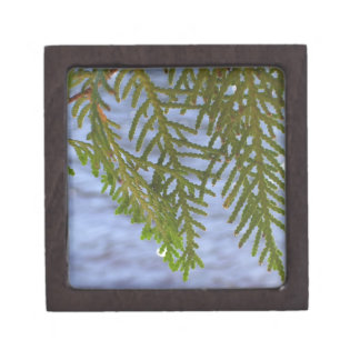 Nature photography keepsake box