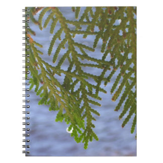 Nature photography notebook
