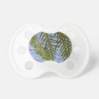 Nature photography pacifier