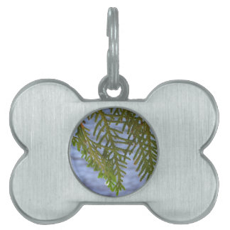 Nature photography pet ID tag