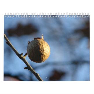 Nature Photos Calendar
