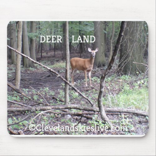 NATURE PHOTOS OF DEER ON MOUSE PADS