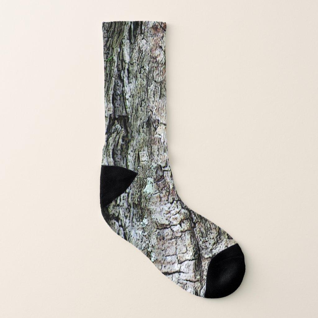 Nature Pine Tree Old Bark