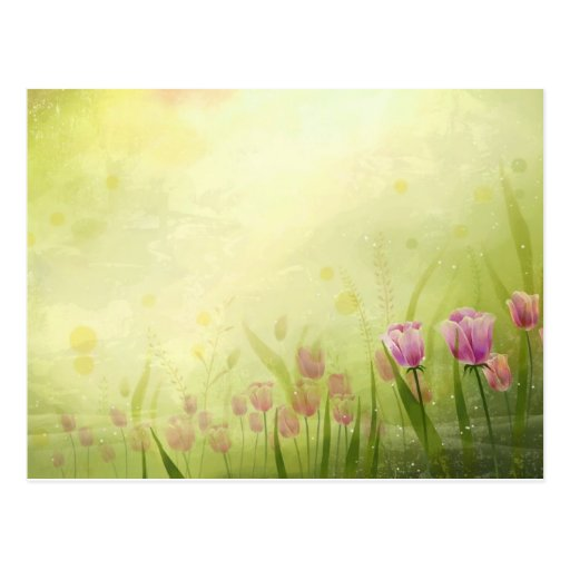 NATURE - PINK TULIPS POST CARDS