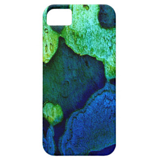 Nature Platterns iPhone 5 Covers