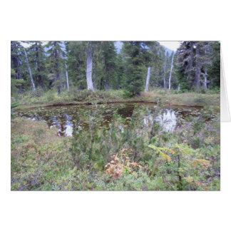 Nature Postcards