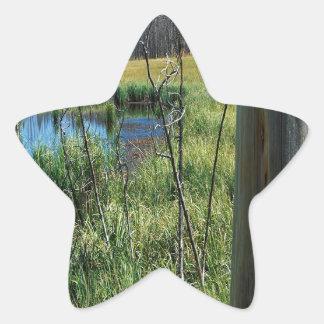 Nature Reserve Wilderness Water Hole Star Sticker