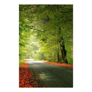 Nature Road Springtime Woods Stationery