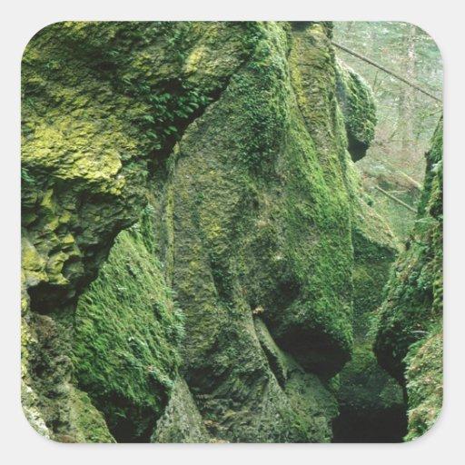 Nature Rocks Green Mould Square Sticker