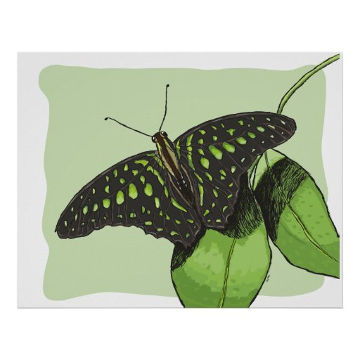 Nature's Camouflage Butterfly Posters