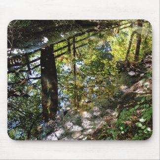 Nature s mirror mouse pads
