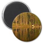 Nature's Reflections custom magnet