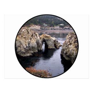 Nature Scene Postcard