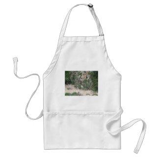 Nature Scene: Sand, Rocks, Tree, Canyon Adult Apron