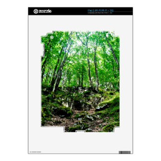 Nature Scenery Forest Walks in the UK Decal For iPad 2