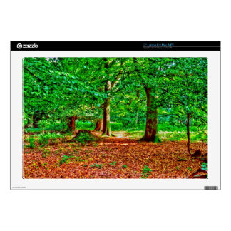 "Nature Scenery Forest Walks in the UK Decals For 17"" Laptops"