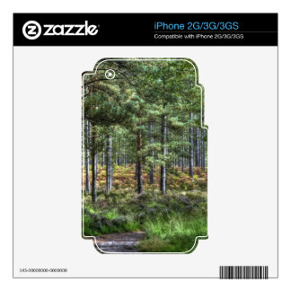 Nature Scenery Forest Walks in the UK Decals For iPhone 3