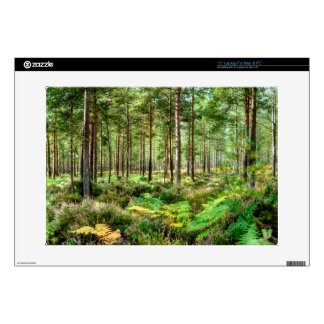 Nature Scenery Forest Walks in the UK Decals For Laptops