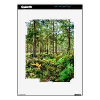 Nature Scenery Forest Walks in the UK iPad 2 Decals