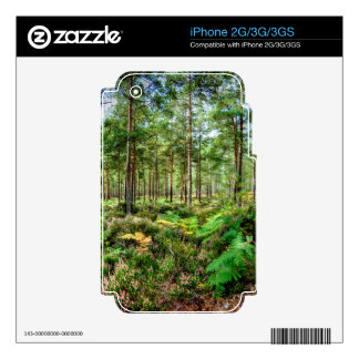 Nature Scenery Forest Walks in the UK Skins For The iPhone 3G
