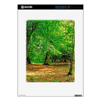 Nature Scenery New Forest Hampshire UK Skins For iPad