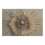 Nature Sculpture Photography Composition Centered Wood Wall Art
