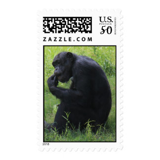 Nature Series Postage, Chimpanzee, The Thinker Postage
